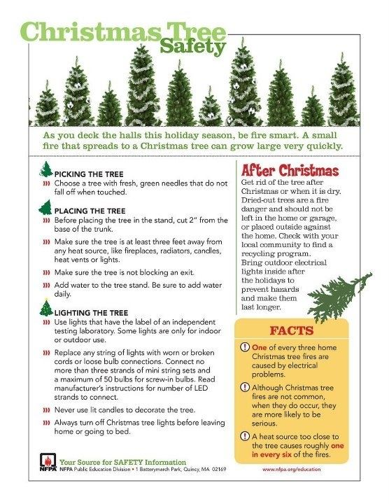 Christmas Tree Safety