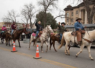 People riding horses in parade