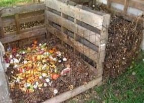 Picture of compost bin
