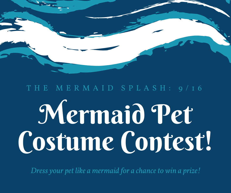 Mermaid Pet Costume Contest